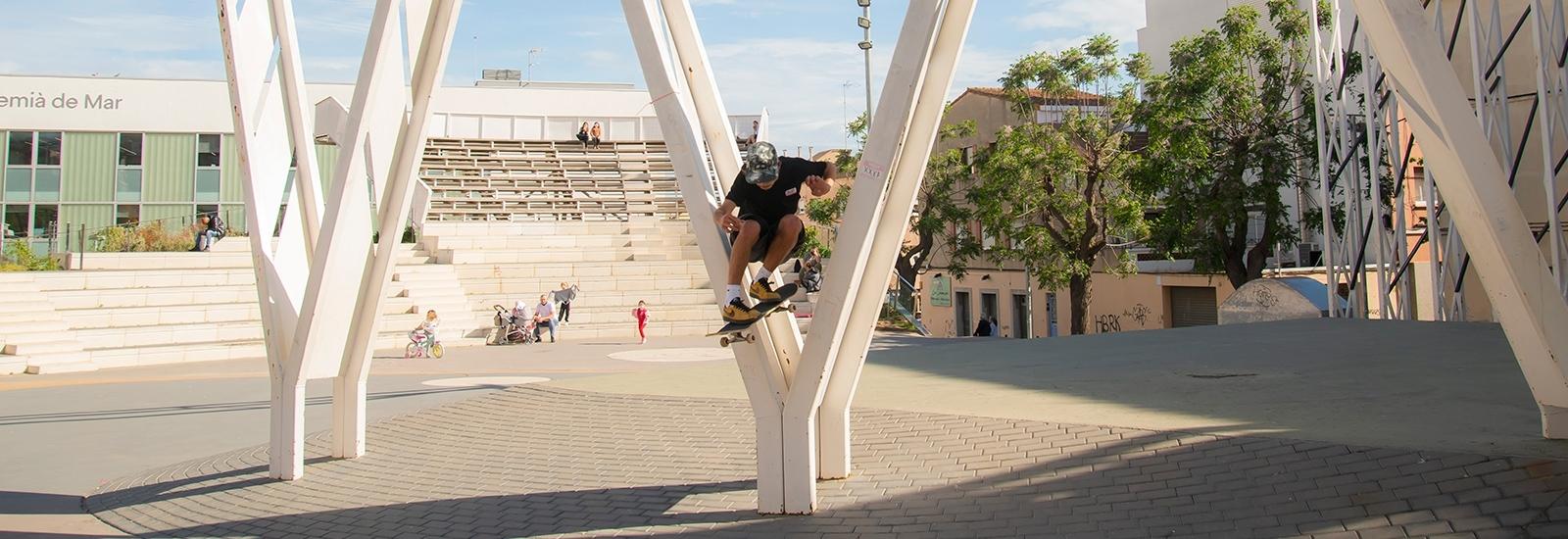 Skateboard - Hydroponic