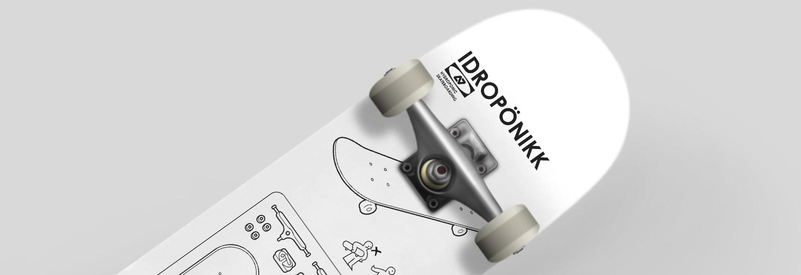 Skates Completos - Hydroponic