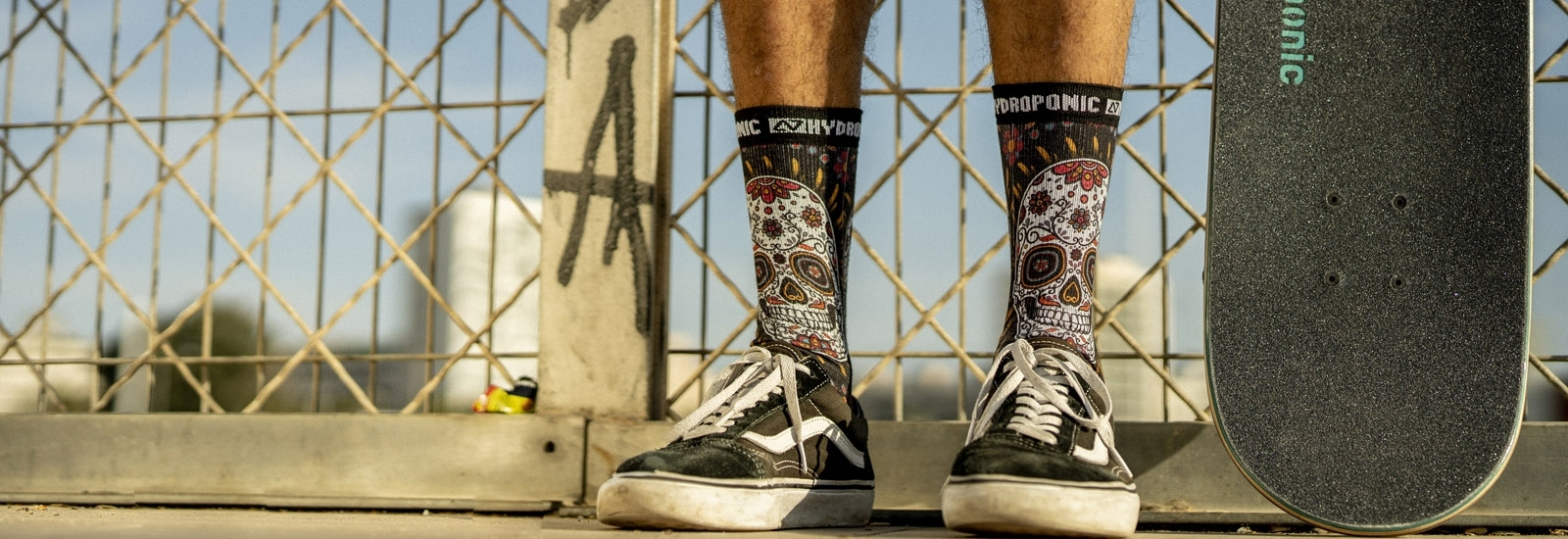 Socks - Hydroponic